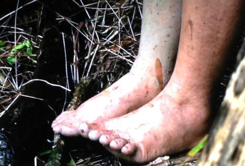 Lauras feet