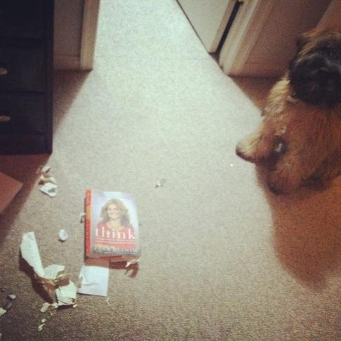 stan eats a book